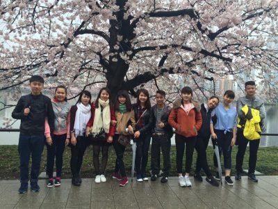 Có nên đi du học Nhật Bản tự túc không?